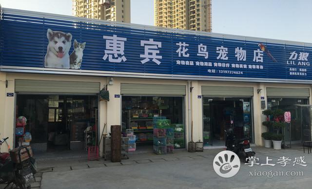 惠宾花鸟宠物店