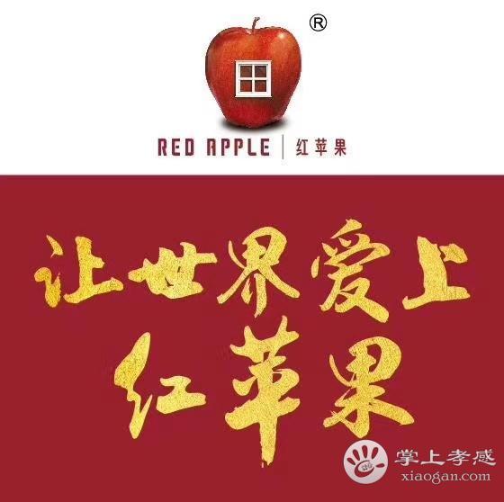紅蘋果家具