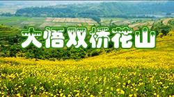 大悟雙橋花山