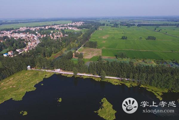 老观湖国家湿地公园分区介绍!应城老观湖国家湿地公园包含哪些区域?