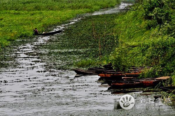 应城老观湖湿地公园的来历 老观湖的命名原因!