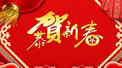 2019春节