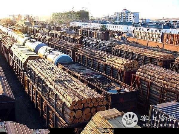 外地木材商甘肃11选5基本走势图安陆被 掐 ,3名涉事青年被拘留[图1]