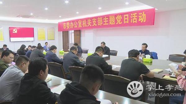 应城市委办公室举办支部主题党日活动[图1]
