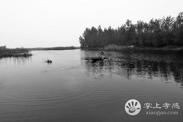 应城老观湖国家湿地公园怎么去?应城国家湿地公园自驾路线![图1]