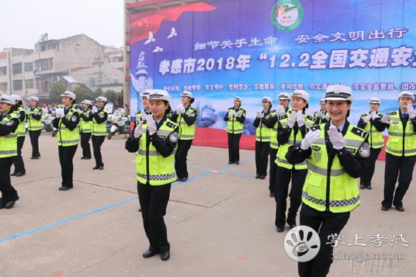 孝感市交警在桂桥小学开展12.2全国交通安全日活动[图3]