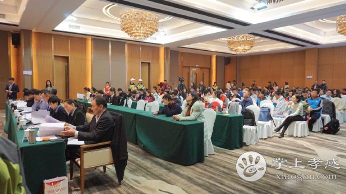 第四届中国青年志愿服务项目大赛开幕 孝感参赛选手已完成路演答辩[图4]