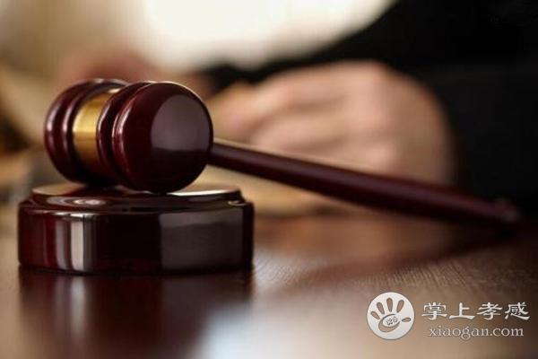 孝南区法院公开审理涉黑社会性质组织犯罪案件[图1]