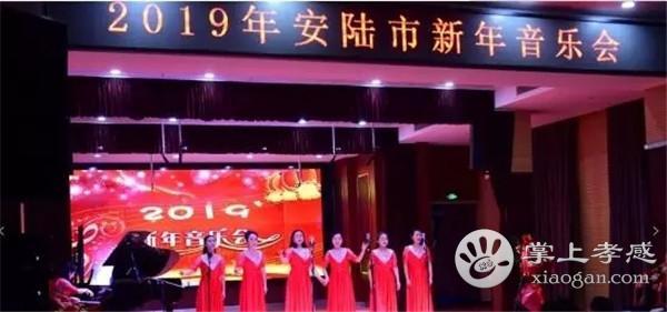 安陆市v小学小学上演2019安陆市新年音乐屯小学外图片