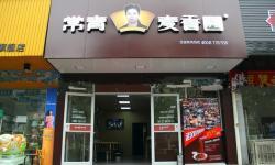 常青麦香园(孝感体育西路店)