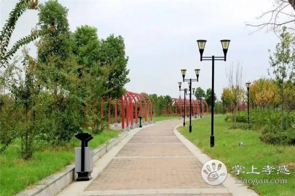 云梦曲阳河公园适合一年四季去吗?云梦曲阳河公园一年四季美景介绍