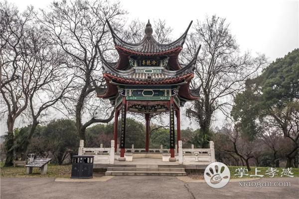 武汉冬日美景TOP榜,爱好旅游的孝感人一个景点都别错过!