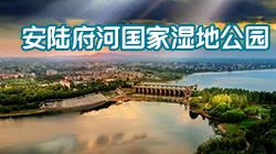 安陆府河国家湿地公园