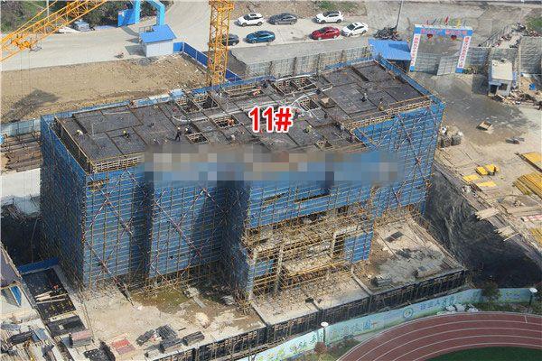 孝感城际温哥华3月进度:9#楼已建至第5层