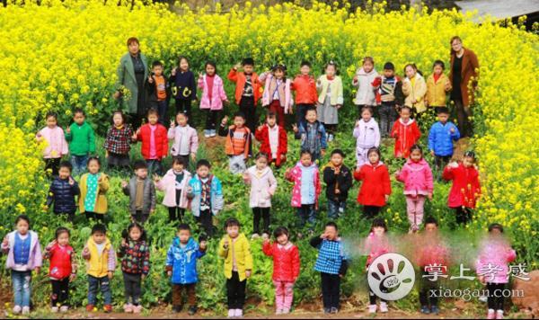 安陆市王义贞镇中心小学幼儿园走进大自然[图2]