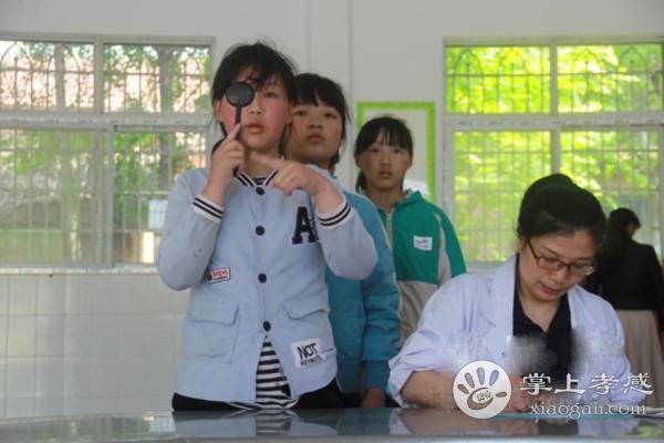 安陆王义贞镇中心小学开展视力检查活动[图1]