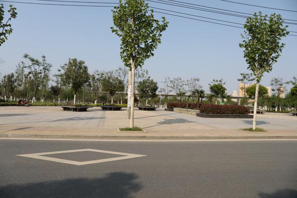 西湖明珠凤竹苑 降价急售 精装修 3室2厅2卫 125平米 证满2年