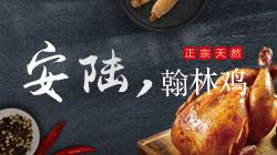 安陆翰林鸡