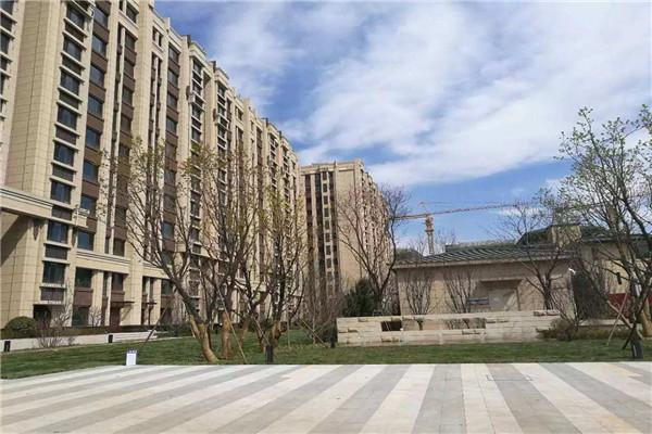 中建国际旁边 春尚小区 精装两房80平 家电齐全 房间温馨整洁拎包 1400元/月