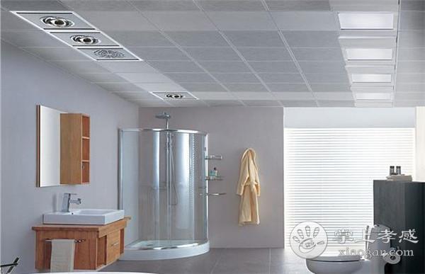 孝感卫生间吊顶选择哪种材料?孝感卫生间吊顶选哪种材料更好?[图1]