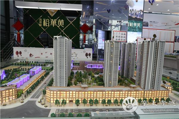 东城区 东站之邻 碧桂园城市之光 精装修 3室2厅2卫 108平米 拎包即入住 77万