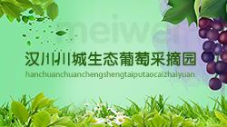 汉川川城生态葡萄采摘园