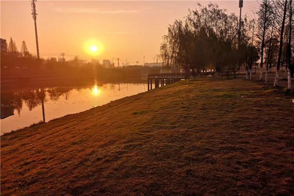 夜幕下的孝感澴川公园,这样的景色你见过吗?
