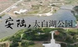 安陆太白湖公园
