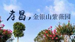 孝昌金银山紫薇园