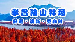 孝昌陆山林场
