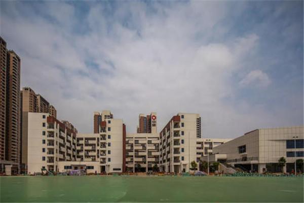安陆新晟玲珑府是学区房吗?安陆新晟玲珑府周边有什么学校?