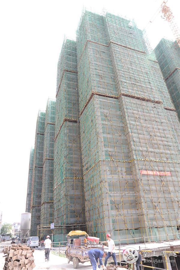 孝感金一珅港5月份工程进度:5#/7#/8#即将封顶,6#楼建至第四层[图2]