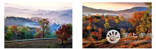 江流、山川、湖泊、绿树,500万人的孝感,风光旖旎,景色如画![图4]