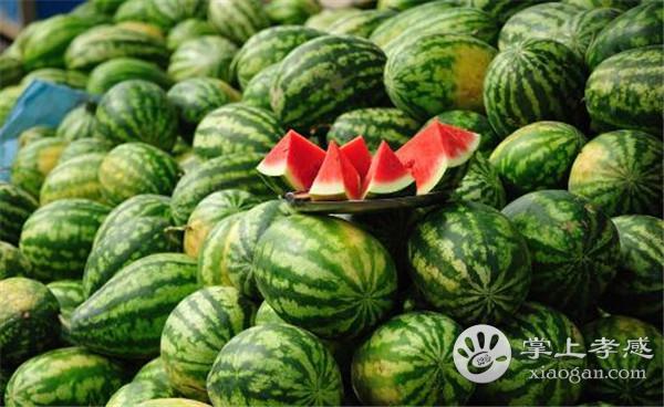 孝感人芒种前后可以吃什么水果?芒种节气孝感时令水果介绍[图3]