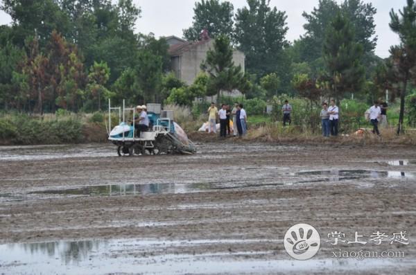 孝南区开展乘座式水稻直播同步侧深施肥机试验[图1]