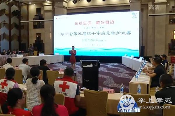 孝感市红十字会在湖北省第五届红十字应急救护大赛中揽殊荣[图1]