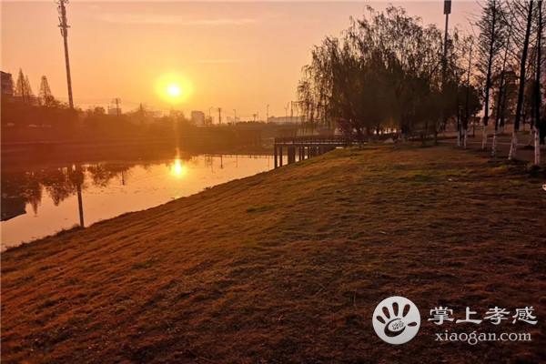 夜幕下的孝感澴川公园,这样的景色你见过吗?[图1]