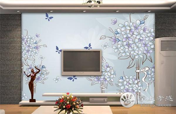 孝感新房设计手绘电视背景墙要如何保养?手绘电视背景墙保养方法介绍[图1]