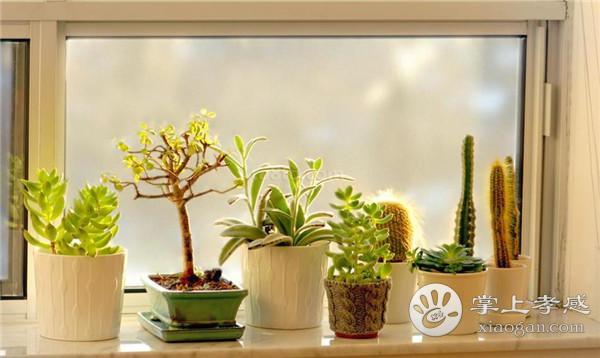 孝感新房窗户需要装窗台石吗?新房装修安装窗台石的好处介绍[图2]