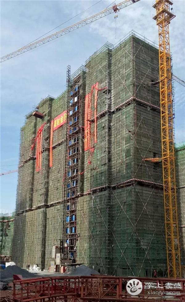 安陆百安·德安府11月工程进度:10#、11#、16#楼喜封金顶 ,8#、9#即将封顶,二期工程已开工建设[图4]