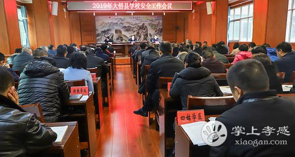 大悟县召开2019年全县学校安全工作会议[图1]