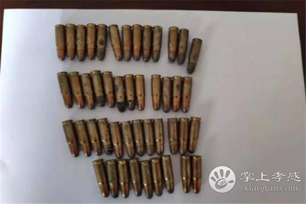 惊!朱湖一场民家中现46发手枪子弹,真相原来是……[图2]