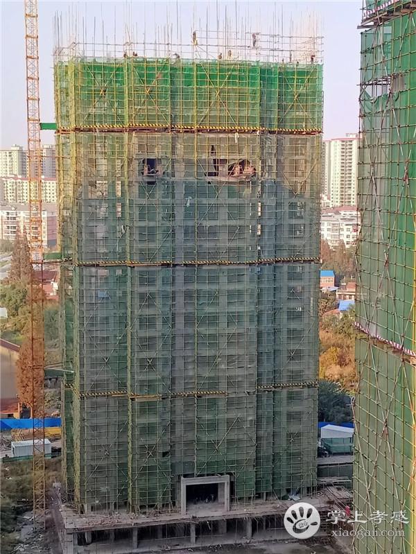 孝感金域国际12月工程进度:18号楼正在搭建21层脚手架,即将进入钢筋绑扎阶段![图2]