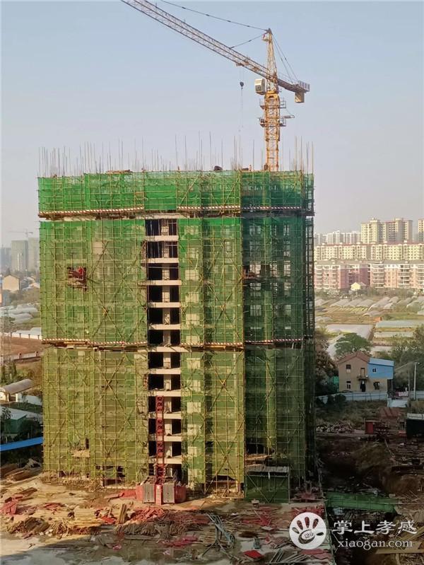 孝感金域国际12月工程进度:18号楼正在搭建21层脚手架,即将进入钢筋绑扎阶段![图4]