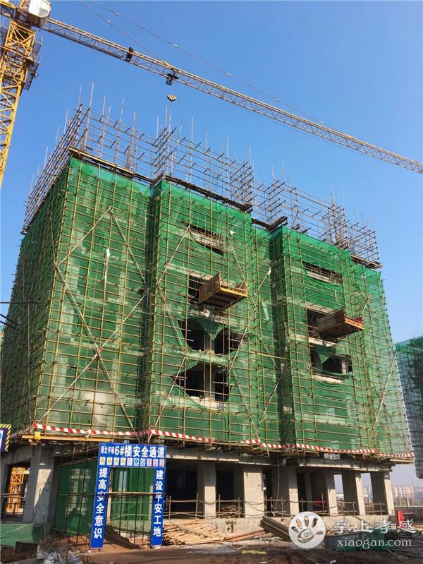 安陆水岸华府12月工程进度:1#楼主体十六层施工至十层完成,2#楼主体十六层施工至主体六层[图5]