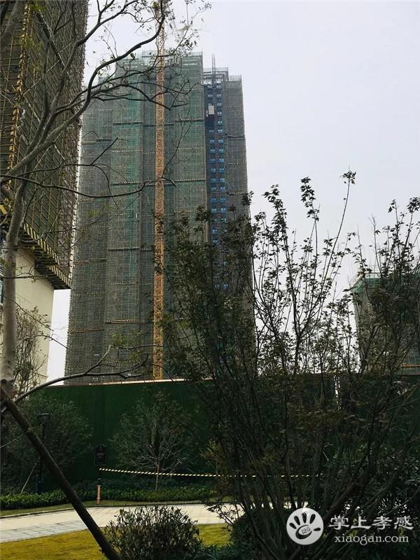 孝感保利香颂12月工程进度:2#砌体结构已建至32层,10#已封顶![图3]