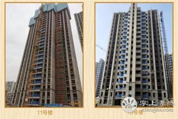 孝感碧桂园新城华府12月工程进度:8#楼外墙涂料完成95%、13#楼涂料面层完成95%[图2]