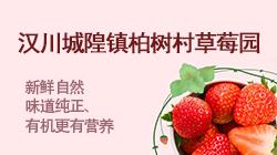 汉川城隍镇柏树村草莓园
