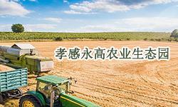孝感永高农业生态园