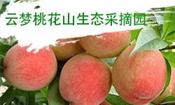 云梦桃花山生态采摘园